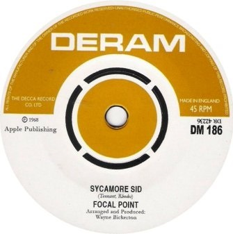 FOCAL POINT  Sycamore Sid