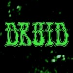 Druid (USA)